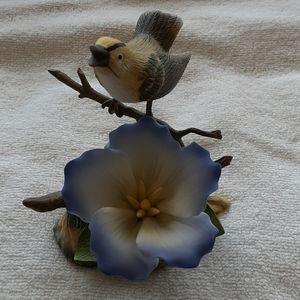 Sadak Gentiana Flower Kinglet
